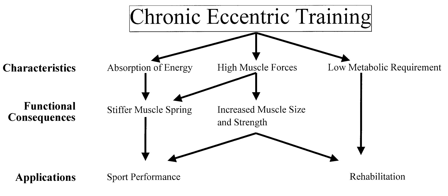 Eccentric muscle contractions, downhill running, and DOMS