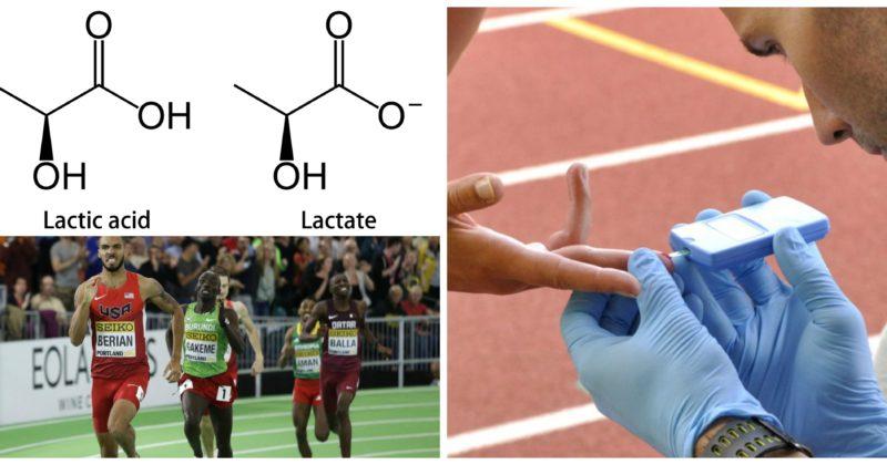 Unraveling Lactic Acid: Debunking the Myths Part I